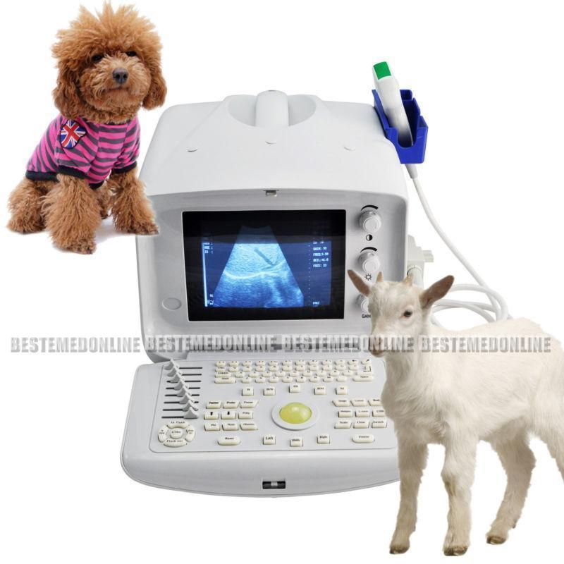 Veterinary VET Ultrasound machine scanner W 3.5mhz Convex PROBE 3D Module Sale