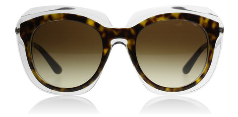 Dolce and Gabbana 4282 Havana on Transparent 757/13