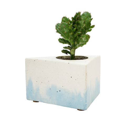 Gradient plant pot - blue