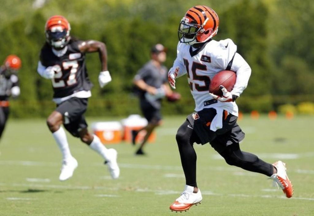 Bengals 2017 Training Camp Opens Friday, July 28 | Giovani Bernard
