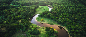 Support the Amazon river basin and rainforest
