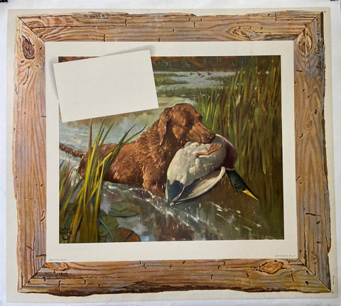 Dog Hunting Ducks Print