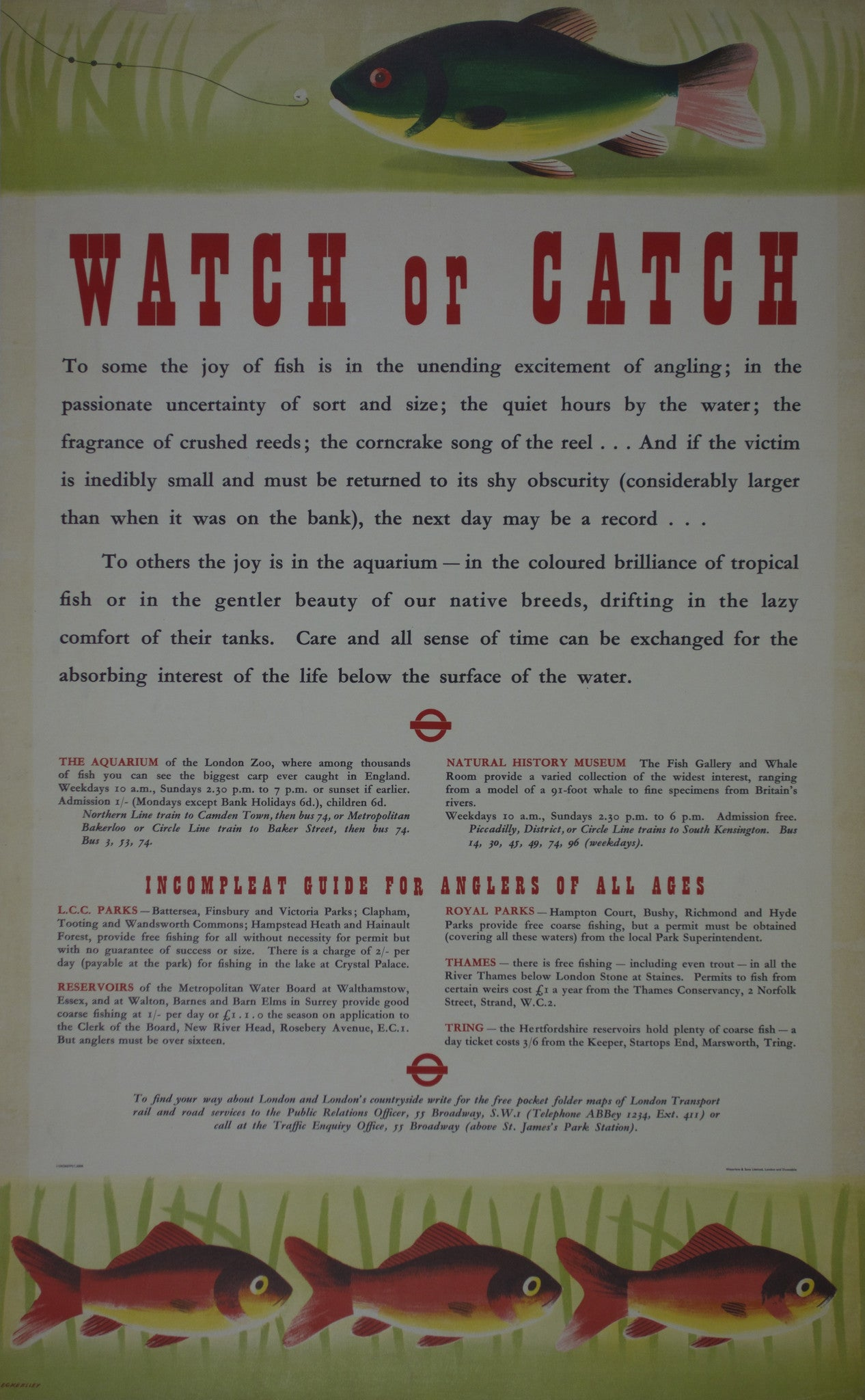 Watch or Catch