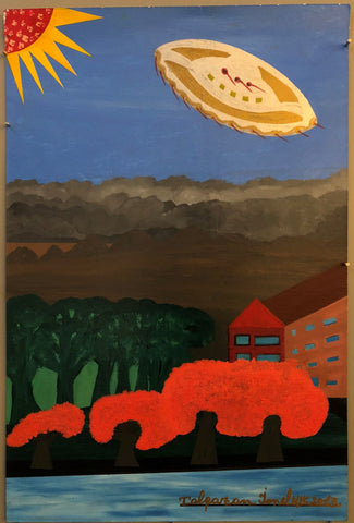 Ionel Talpazan - UFO sighting near private house