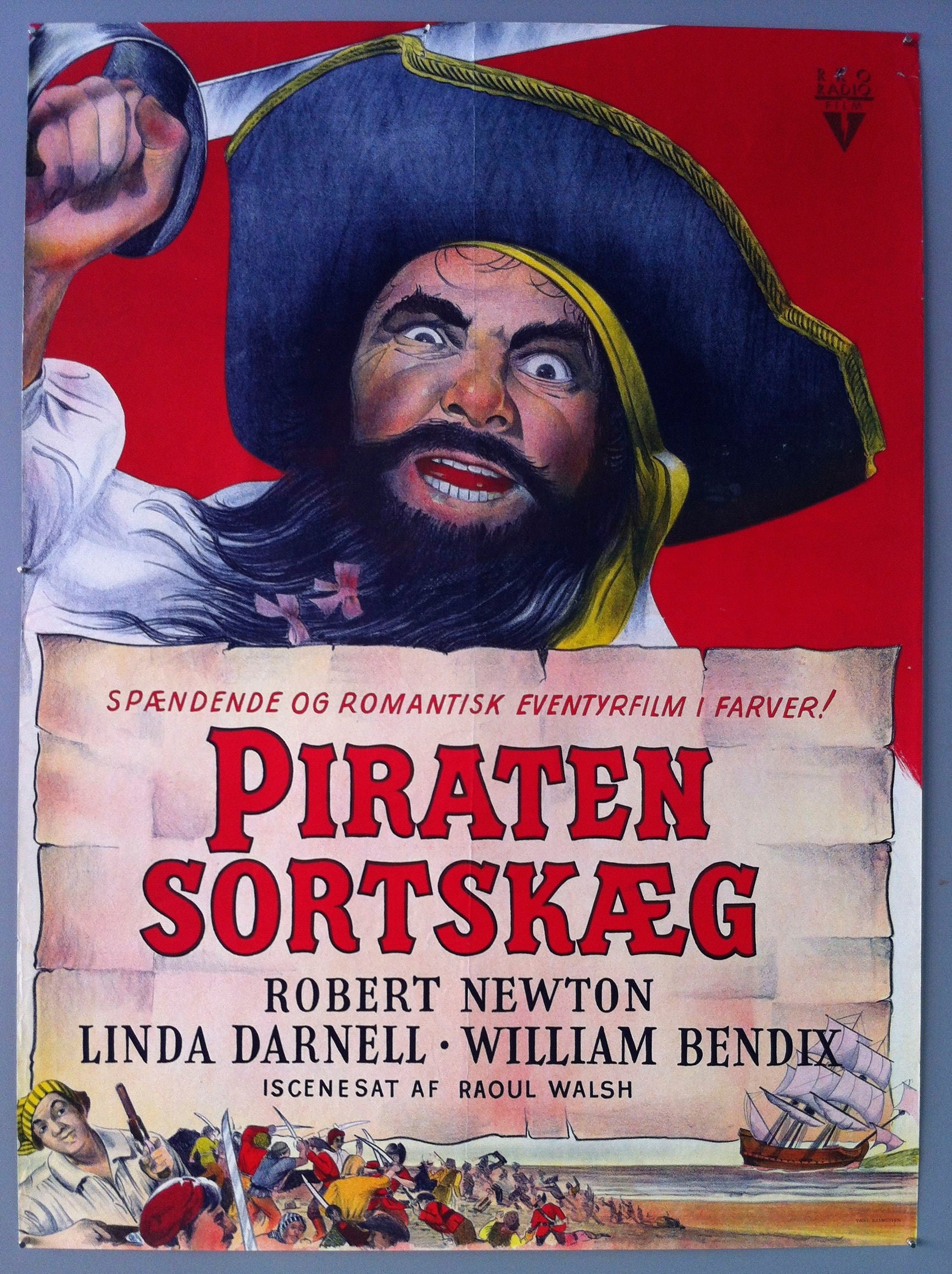 Piraten Sortskaeg