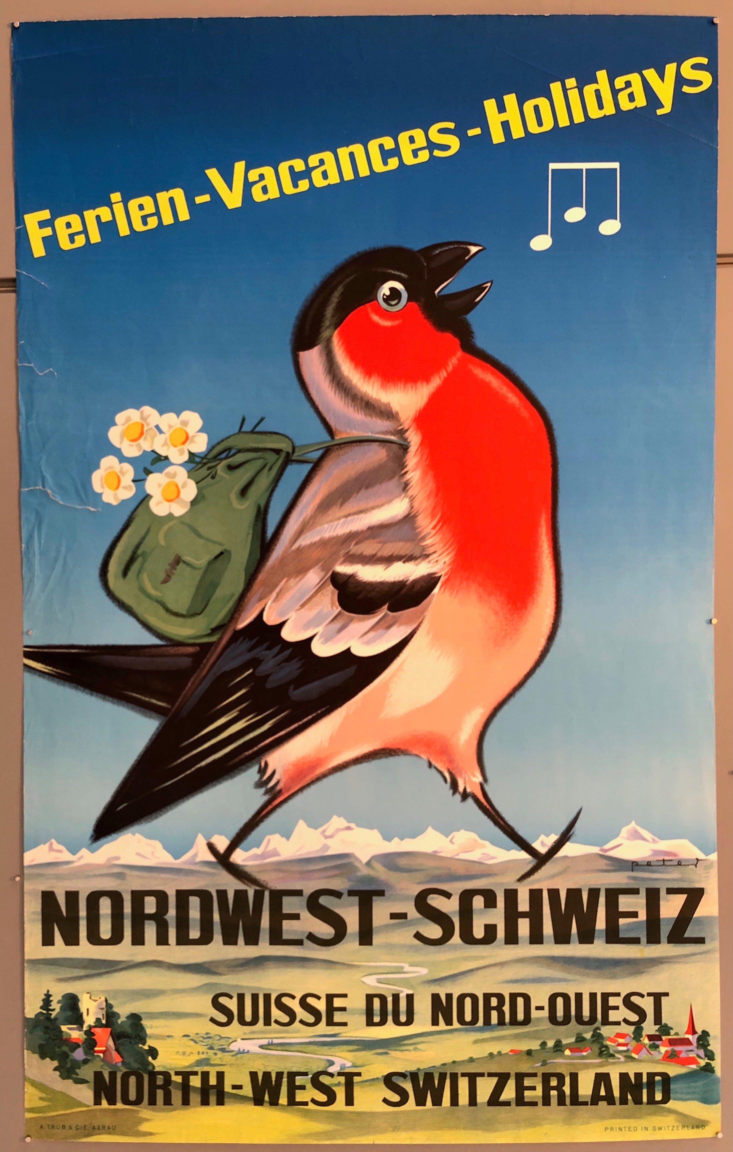 Poster of a red-bellied bird with a green backpack full of white flower