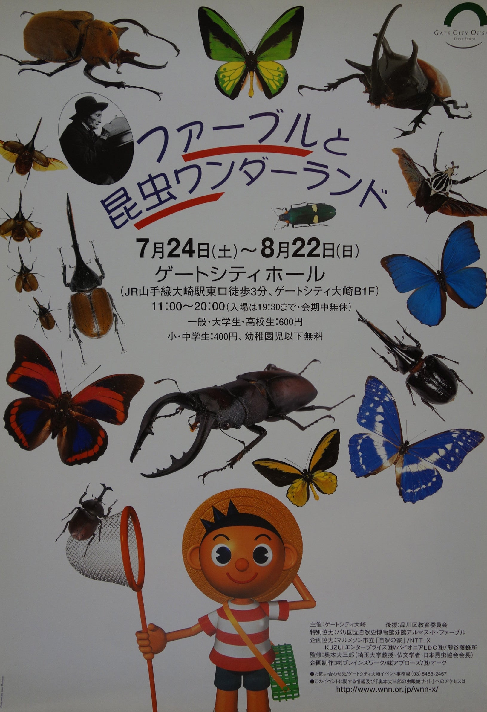 Fabre and insects' wonder land