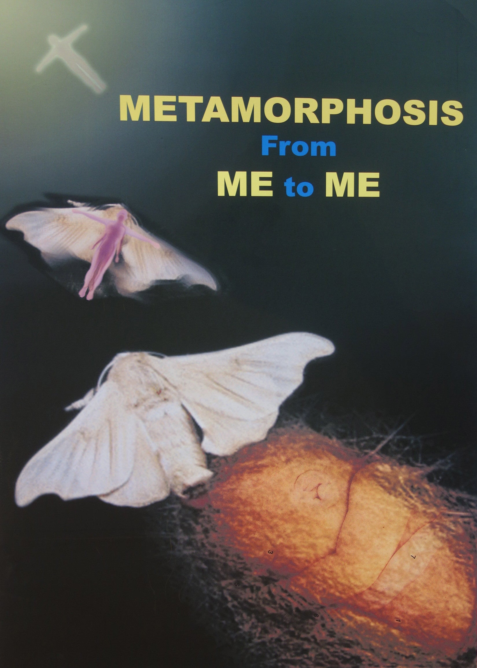 Metamophosis From Me To Me