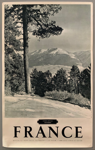 This poster is sepia toned with bold black-and-white writing at the bottom. The photograph takes up the majority of the page.The photograph contains a wide view of a far-off mountain range. In the forefront are a bunch of pine trees.