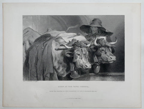 "Oxen at the Tank: Geneva. ""From the Drawing in the Possession of H.W.F. Bolckow. Esq M.P."""