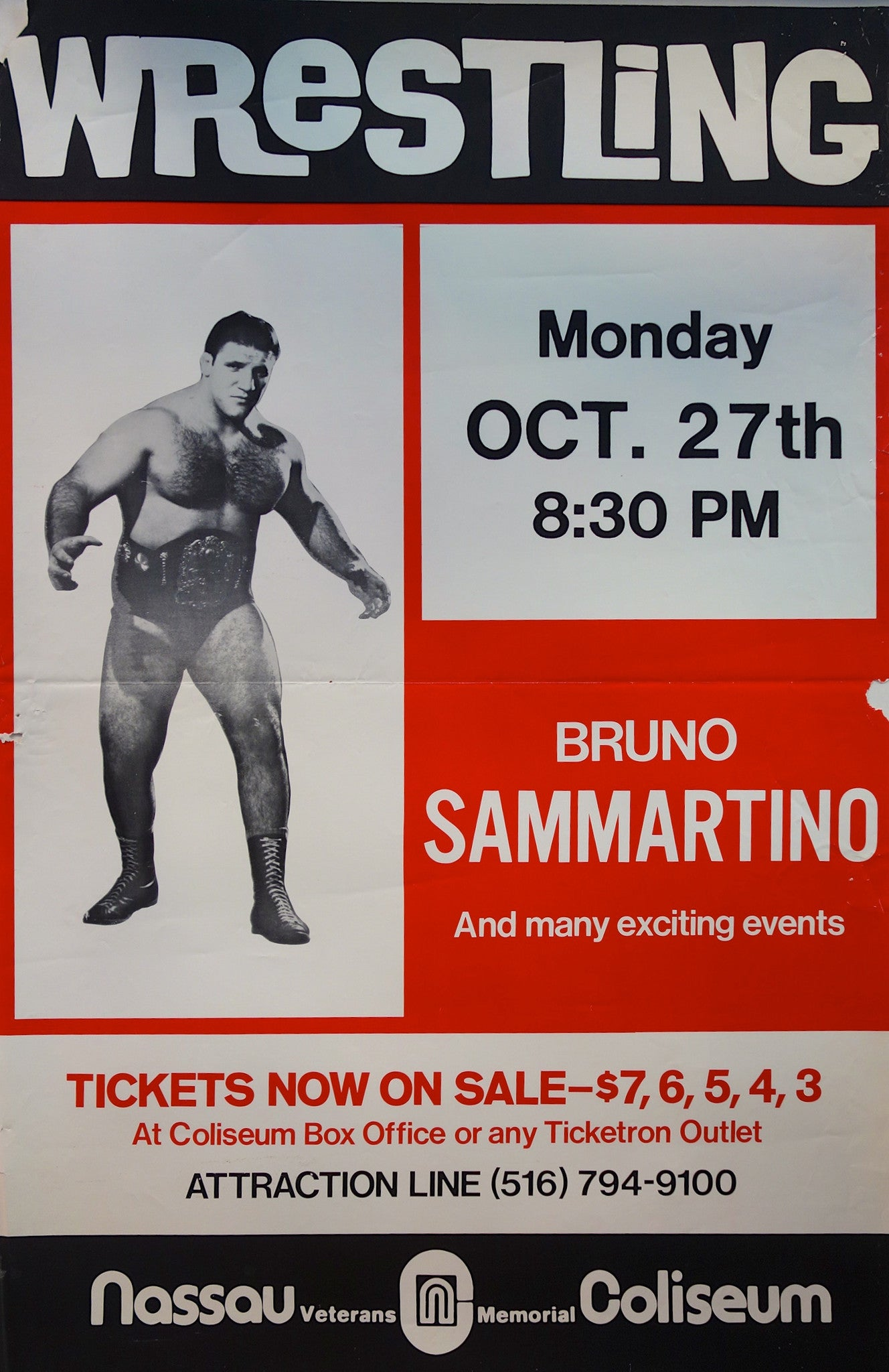 Wrestling Bruno Sammartino