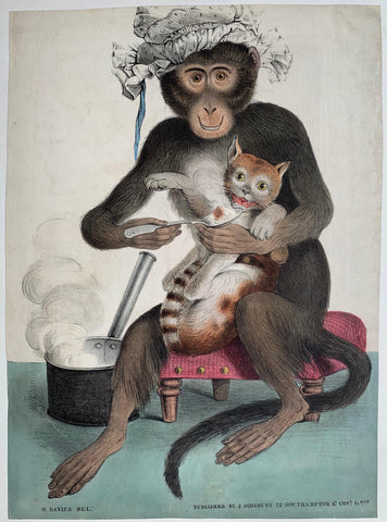 Monkey Feeding Cat