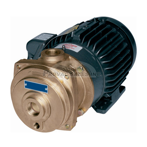 Tuthill A Series Single Stage Liquid Ring Pump