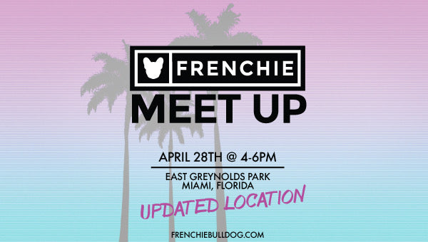 Miami Frenchie Bulldog Meet Up🌴☀️