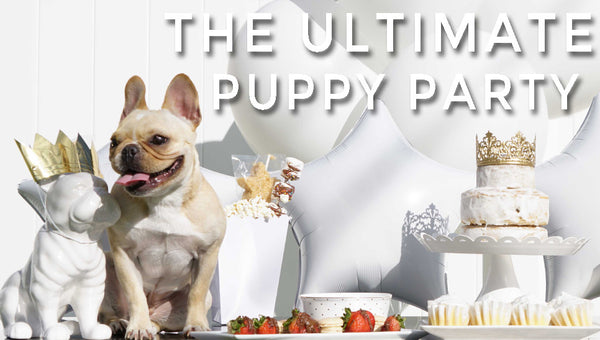 The Ultimate Puppy Party