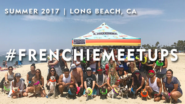 Frenchie Meet Up - Long Beach