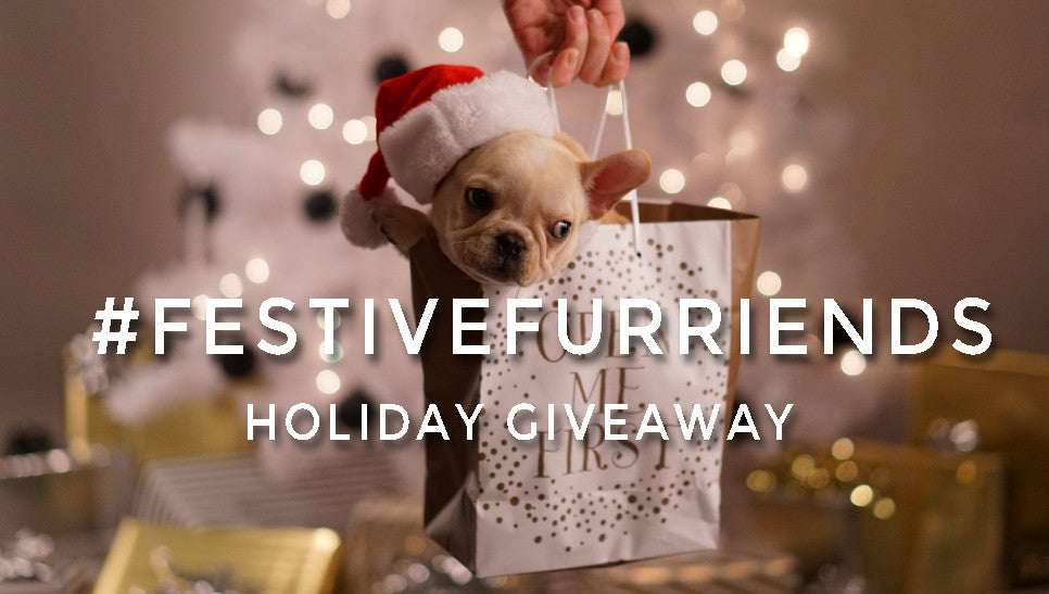 #FestiveFurriends Holiday Giveaway