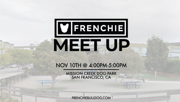 Frenchie Meet Up- San Francisco, California