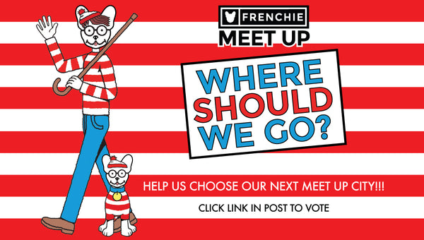 Frenchie Bulldog Meet Ups- Where Should We Go?✈️