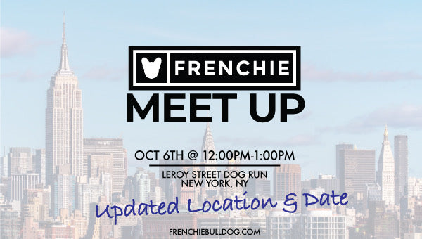 Frenchie Meet Up- New York, New York