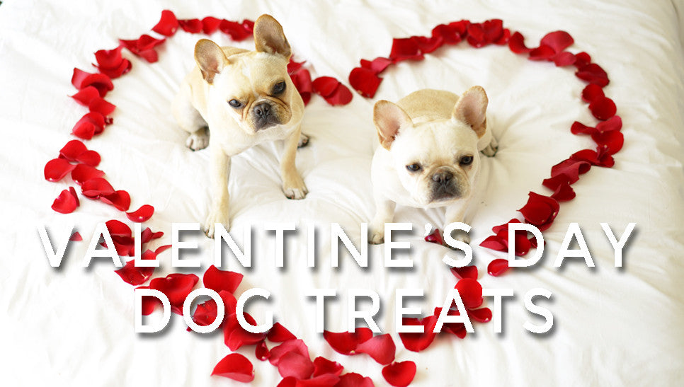 Easy Valentine's Day Dog Treats