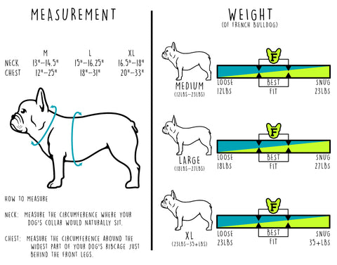 Frenchie Bulldog Size Chart