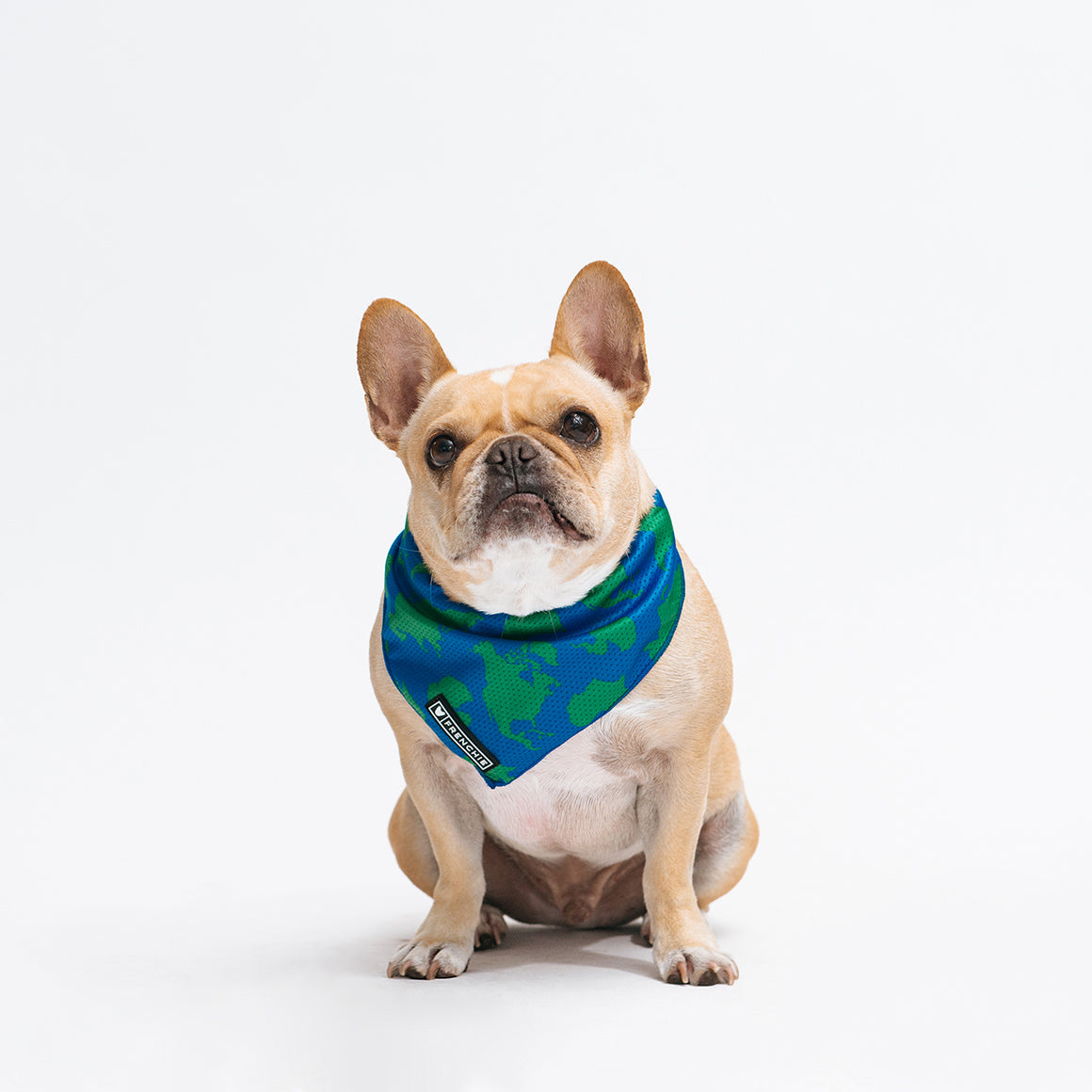 Frenchie Cooling Bandana - United