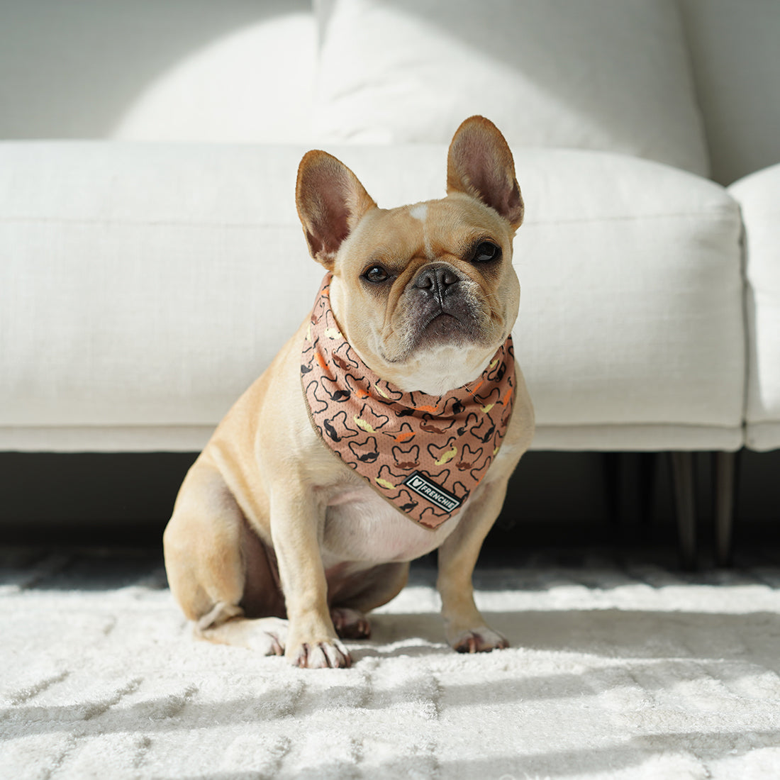 Frenchie Cooling Bandana- Movember - Frenchie Bulldog - Shop Harnesses for French Bulldogs - Shop French Bulldog Harness - Harnesses for Pugs