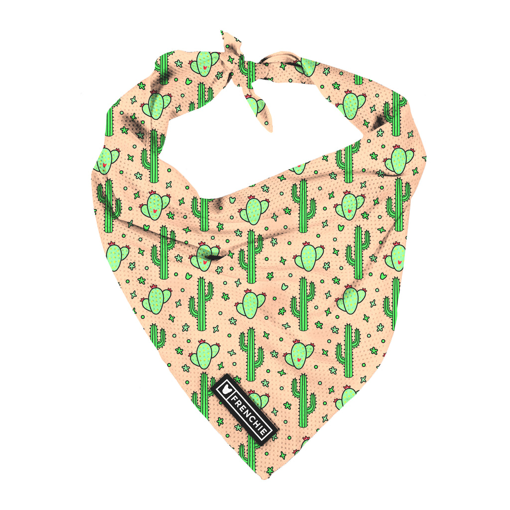 Frenchie Cooling Bandana- Cactus - Frenchie Bulldog - Shop Harnesses for French Bulldogs - Shop French Bulldog Harness - Harnesses for Pugs