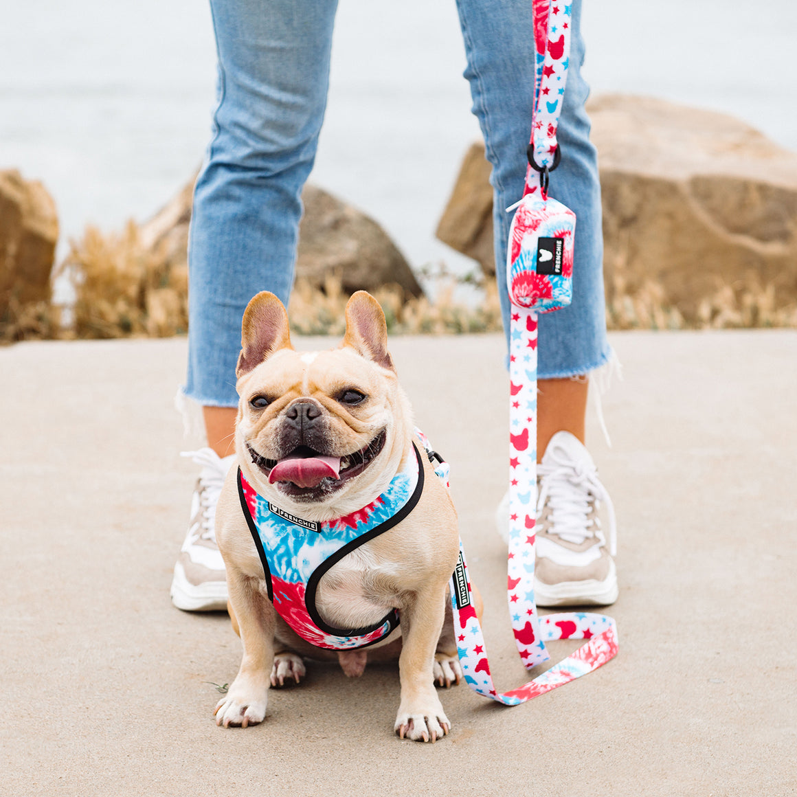Matching Set- Frenchie Duo Reversible Harness and Comfort Leash- 4th of July Tie Dye