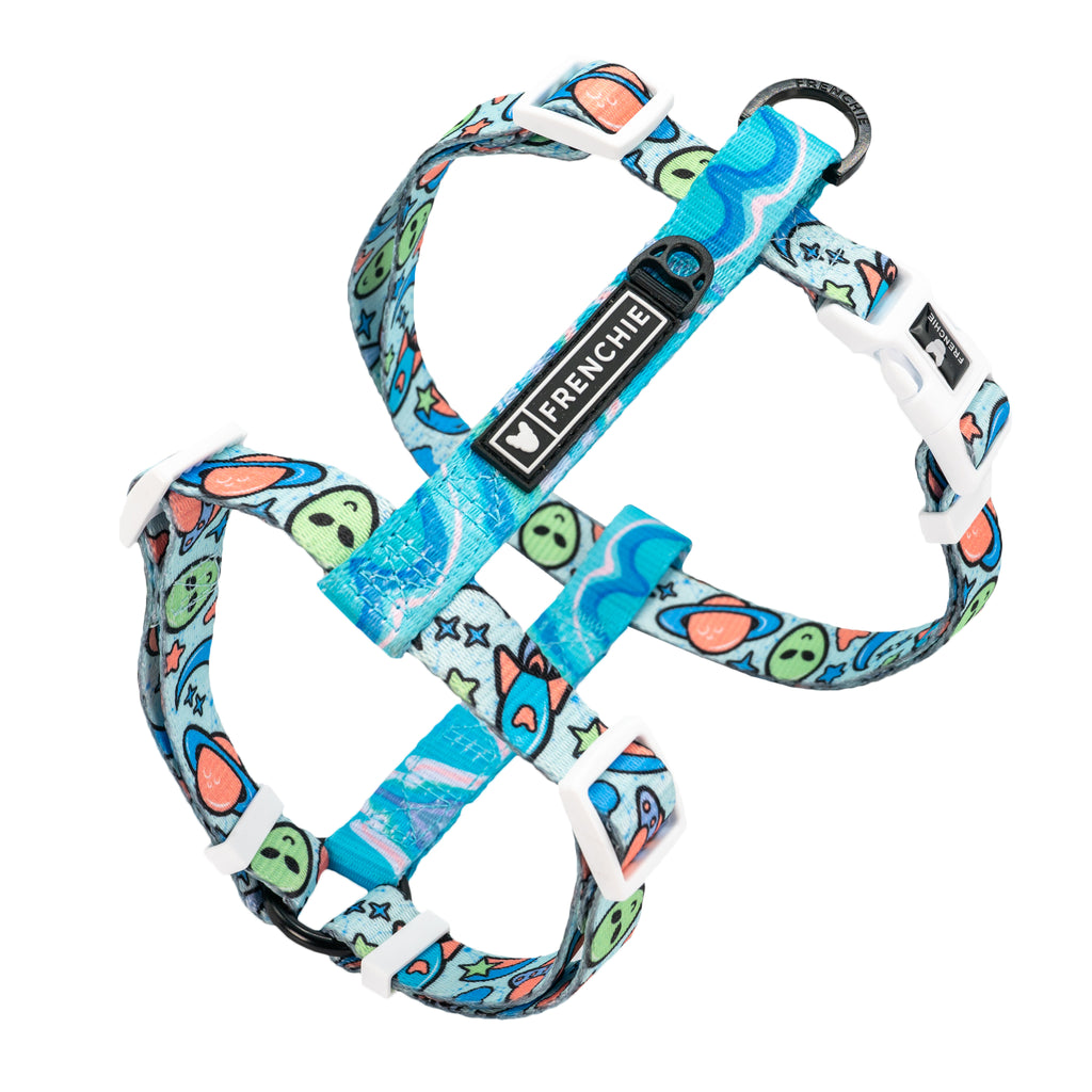 Frenchie Strap Harness - Out of This World
