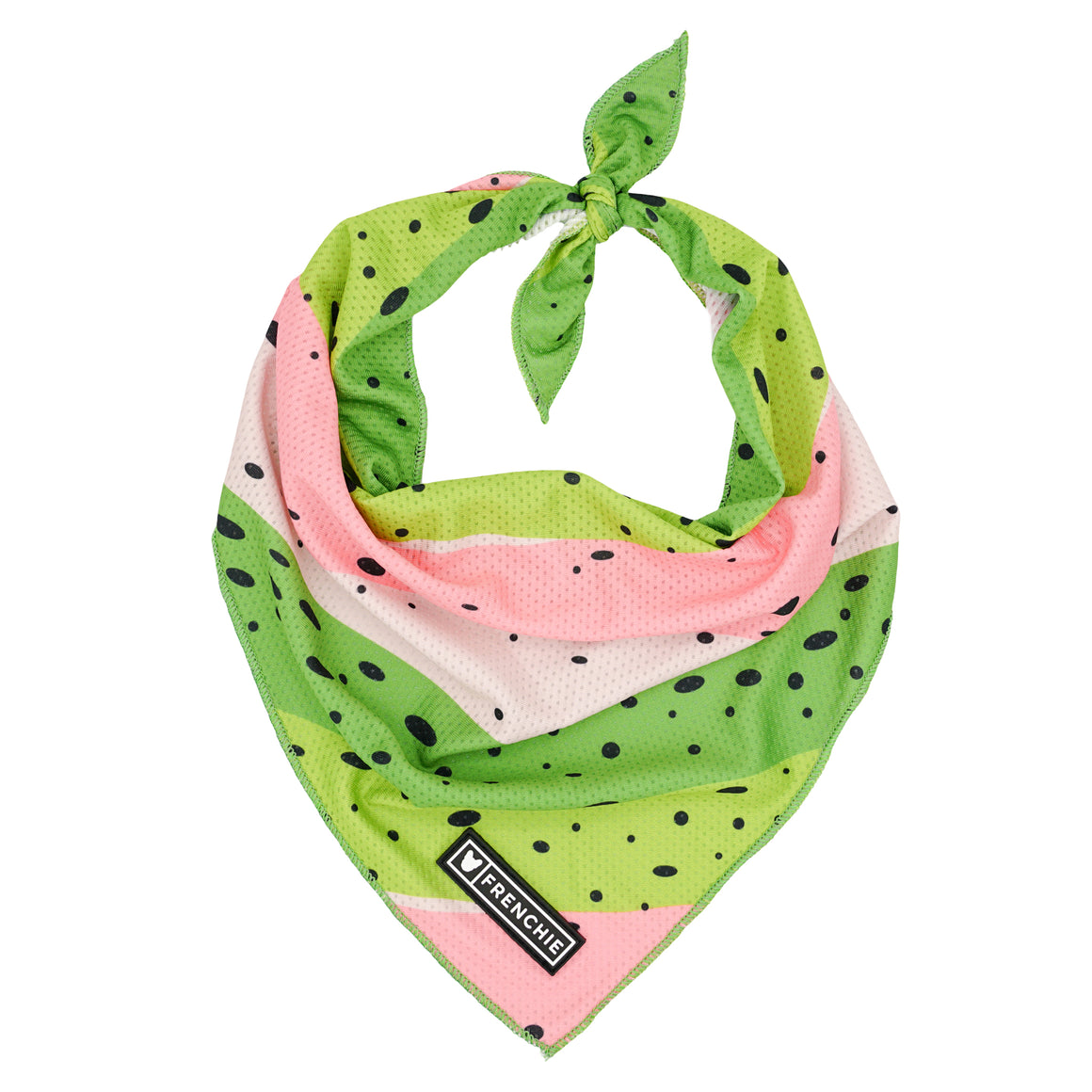 Frenchie Cooling Bandana - Happy Camper- Rainbow Trout