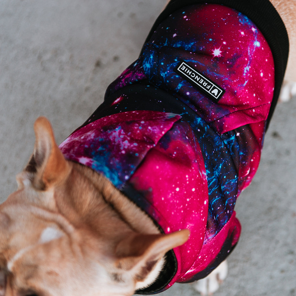 Frenchie Dog Hoodie - Galaxy - Frenchie Bulldog - Shop Harnesses for French Bulldogs - Shop French Bulldog Harness - Harnesses for Pugs
