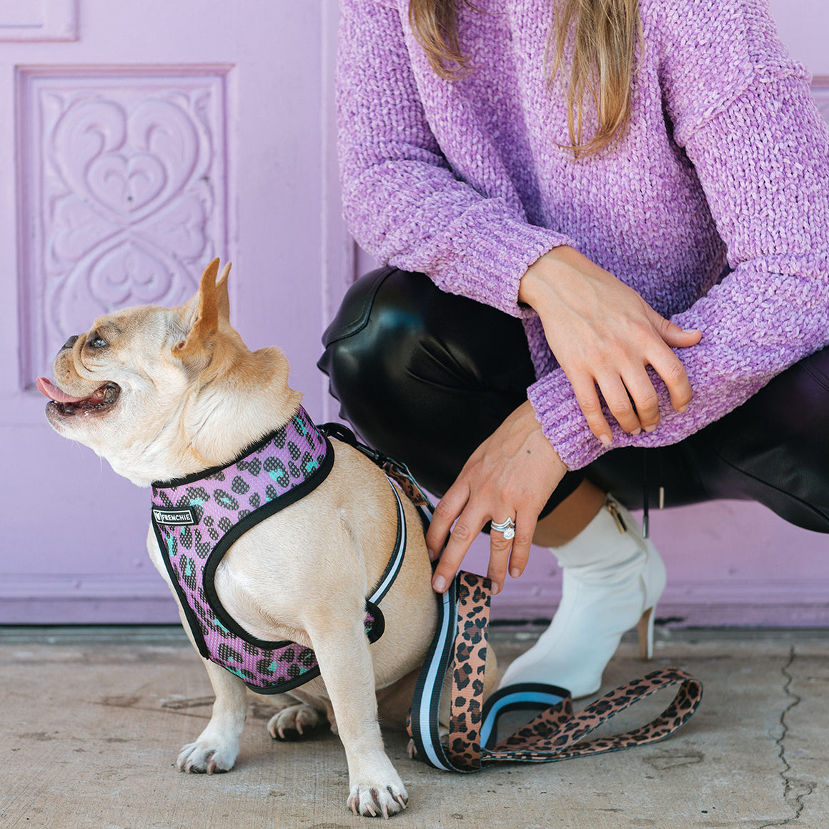 Frenchie Duo Reversible Harness - The Leo