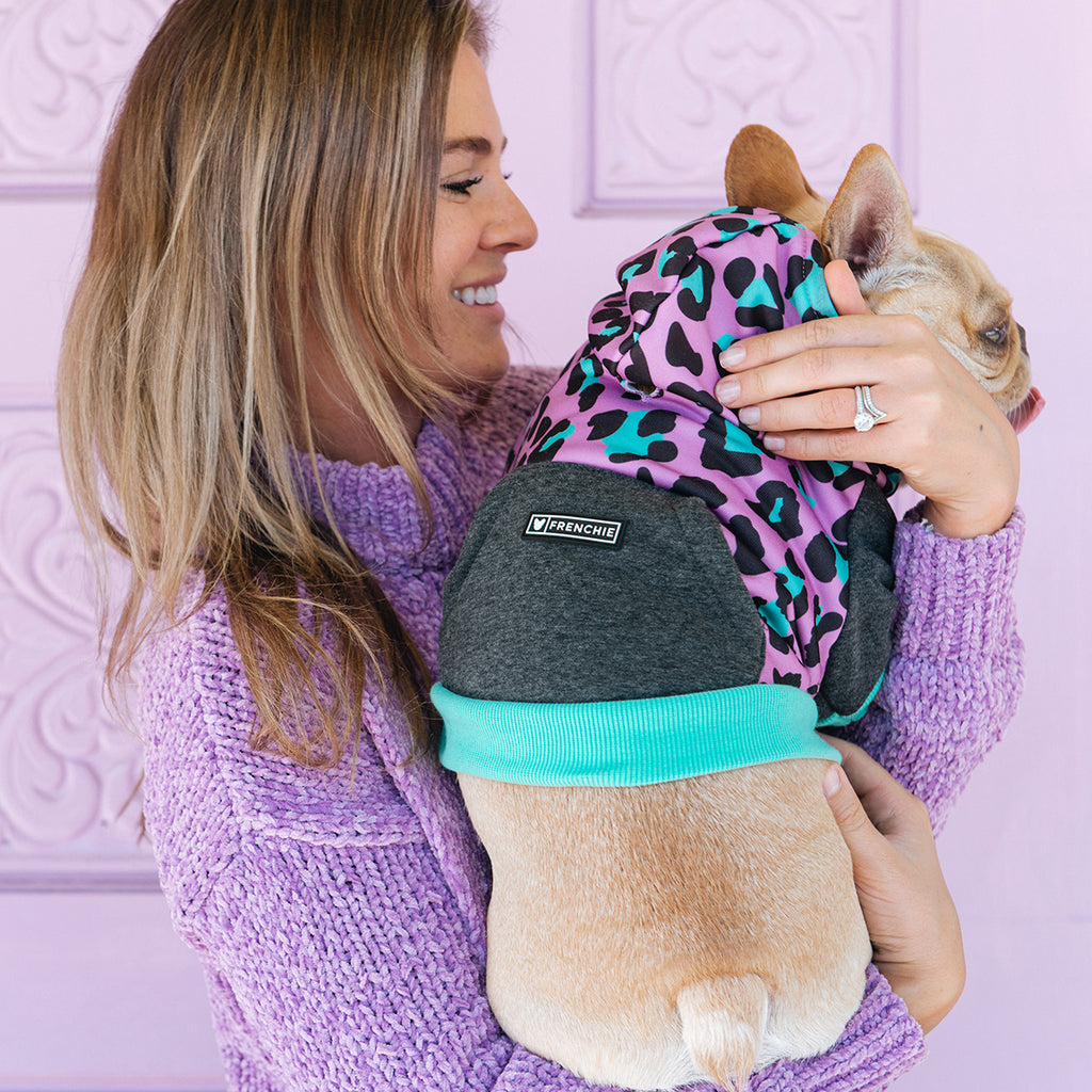 Frenchie Dog Hoodie - Purple Leo - Frenchie Bulldog - Shop Harnesses for French Bulldogs - Shop French Bulldog Harness - Harnesses for Pugs