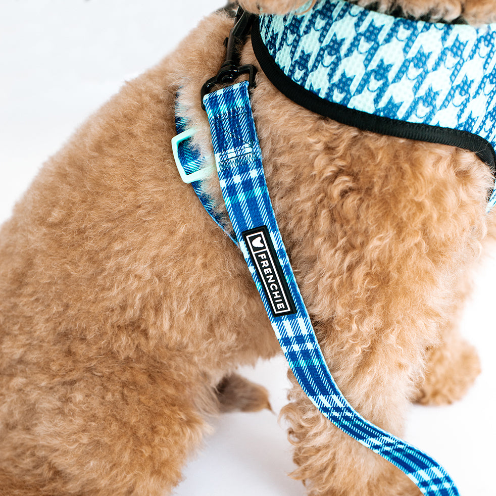 Frenchie Comfort Leash - Blue Bird Plaid