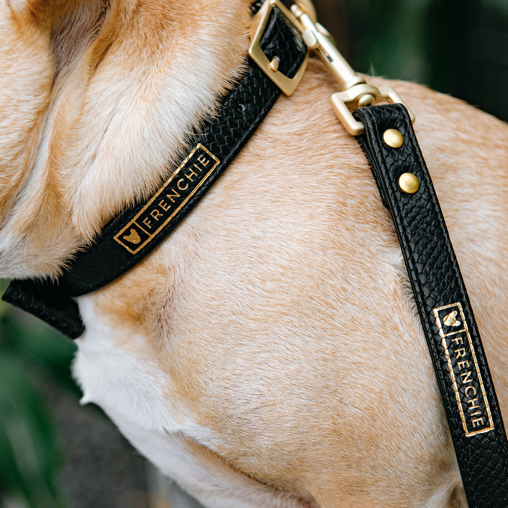 Vegan Leather- Black Croc - Frenchie Bulldog - Shop Harnesses for French Bulldogs - Shop French Bulldog Harness - Harnesses for Pugs