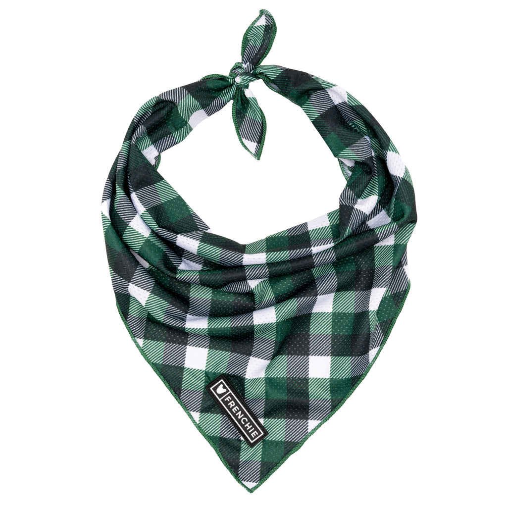Frenchie Cooling Bandana- Emerald Plaid - Frenchie Bulldog - Shop Harnesses for French Bulldogs - Shop French Bulldog Harness - Harnesses for Pugs