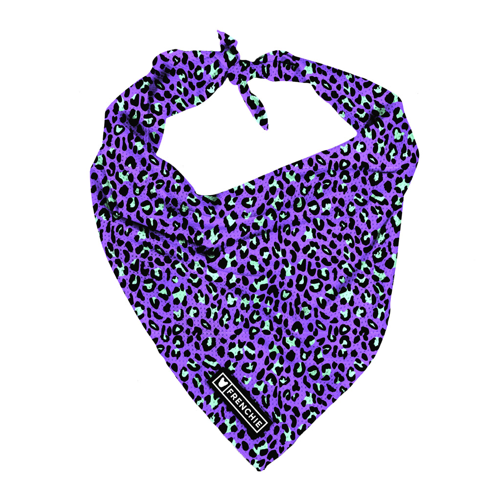 Frenchie Cooling Bandana- Purple Leo - Frenchie Bulldog - Shop Harnesses for French Bulldogs - Shop French Bulldog Harness - Harnesses for Pugs