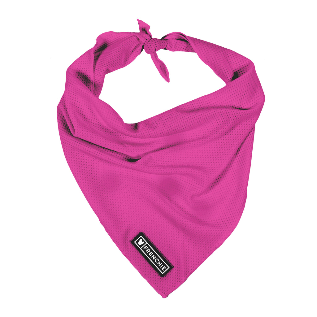 Frenchie Cooling Bandana- Neon Pink - Frenchie Bulldog - Shop Harnesses for French Bulldogs - Shop French Bulldog Harness - Harnesses for Pugs