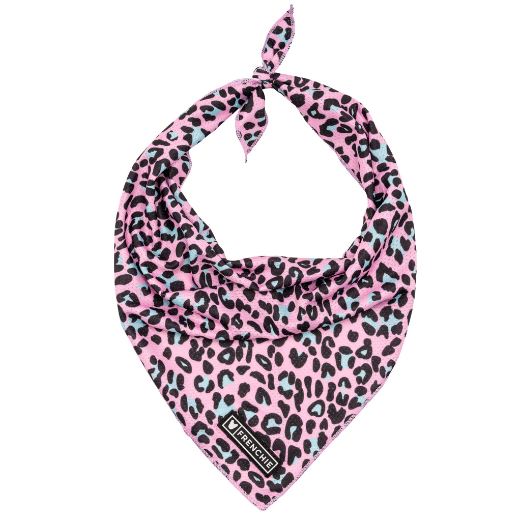 Frenchie Cooling Bandana- The Pink Leo - Frenchie Bulldog - Shop Harnesses for French Bulldogs - Shop French Bulldog Harness - Harnesses for Pugs