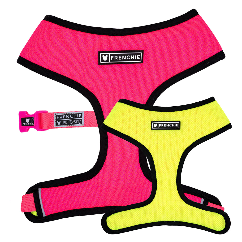 Frenchie Duo Reversible Harness - Neon Pink - Frenchie Bulldog - Shop Harnesses for French Bulldogs - Shop French Bulldog Harness - Harnesses for Pugs
