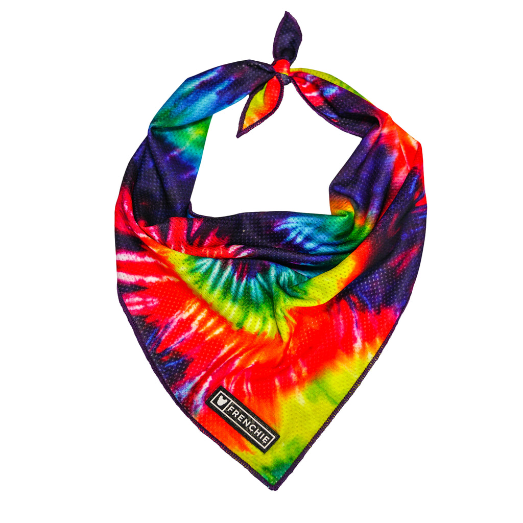 Frenchie Cooling Bandana - Tie Dye - Frenchie Bulldog - Shop Harnesses for French Bulldogs - Shop French Bulldog Harness - Harnesses for Pugs