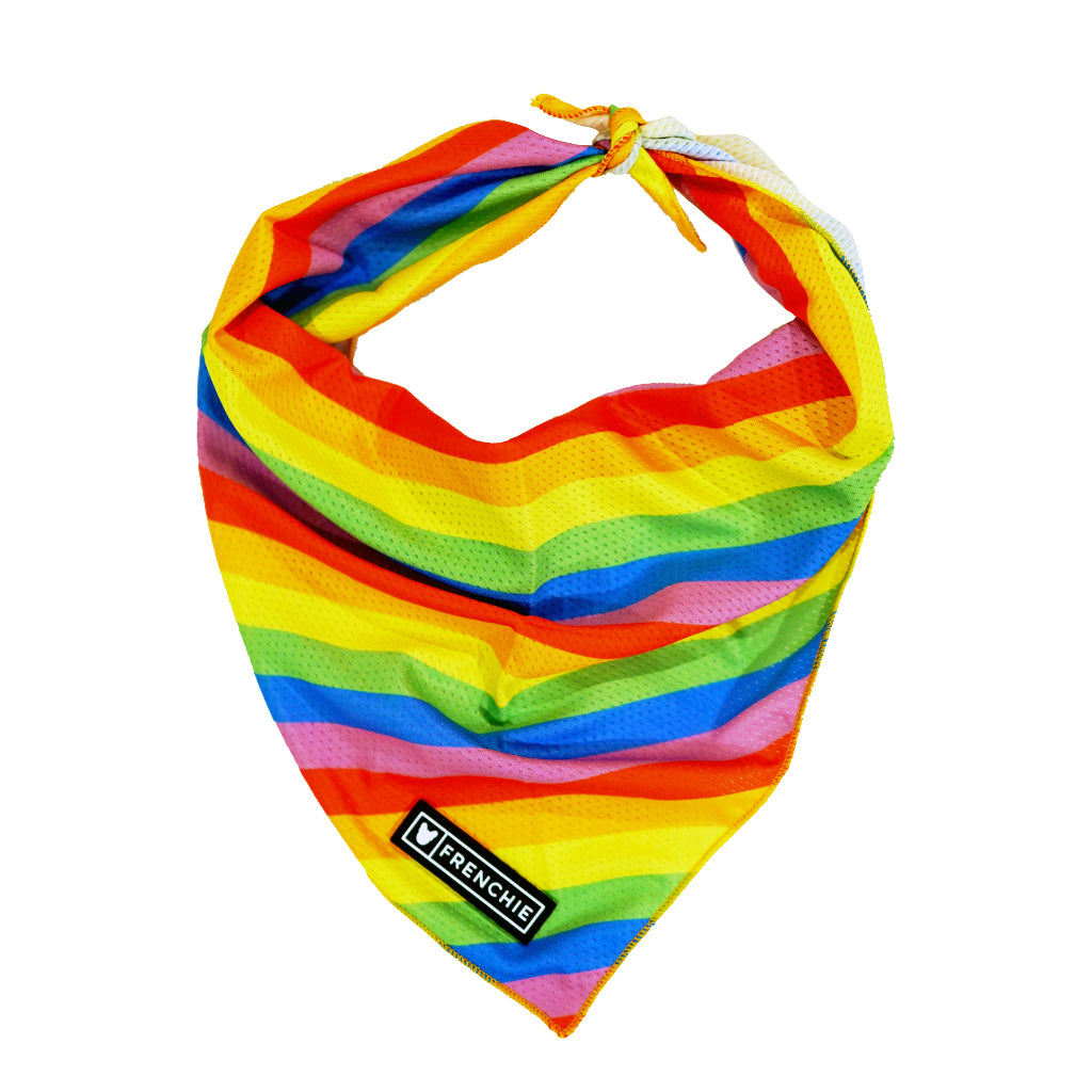 Frenchie Cooling Bandana- Love Is Love - Frenchie Bulldog - Shop Harnesses for French Bulldogs - Shop French Bulldog Harness - Harnesses for Pugs