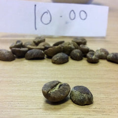 Beans roasted at 10 minutes | Hand Roasted Coffee | Two Spots Coffee
