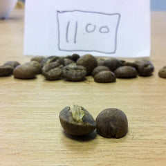 Beans roasted at 11 minutes | Hand Roasted Coffee | Two Spots Coffee
