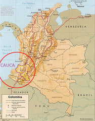 Cauca Region | Two Spots Coffee | Single Origin Coffee for sale