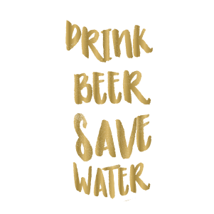 Drink beer save water - Kromebody