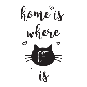 Home is Where Cat is