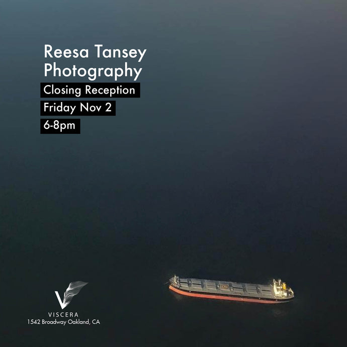 11/2 Reesa Tansey Closing Reception